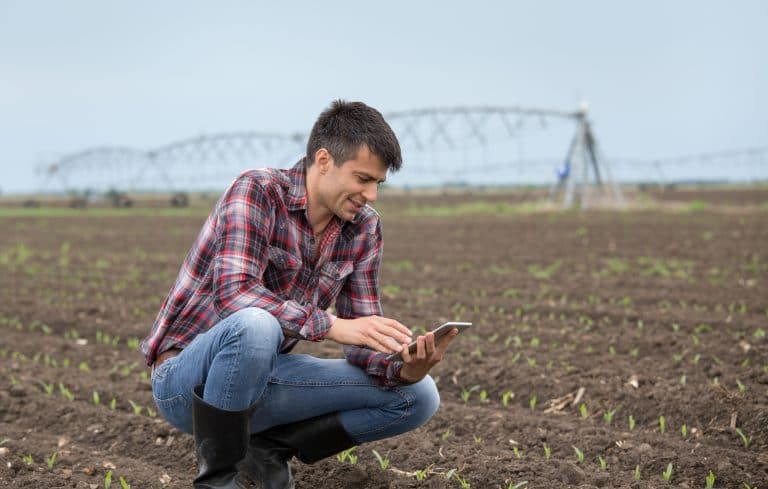 Los casos de éxito en la digitalización del mercado agrario deben darse a conocer.