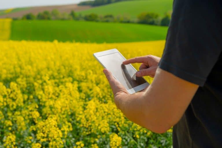 La madurez tecnológica en el agro se perfila como un factor clave para aumentar la productividad.